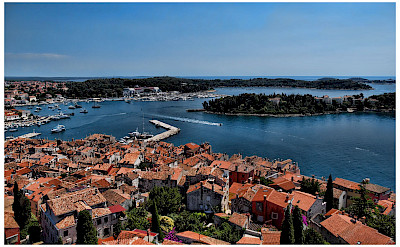 Harbor in Rovinj, Istria, Croatia. Flickr:Mario Fajt