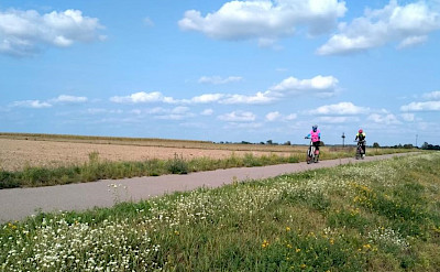 Biebrzanp Greenvelo bike route.