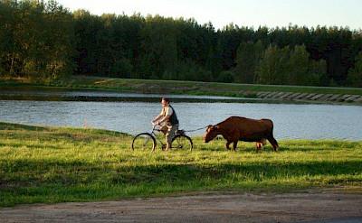Biking the Borderland of Lithuania, Poland, & Belarus.