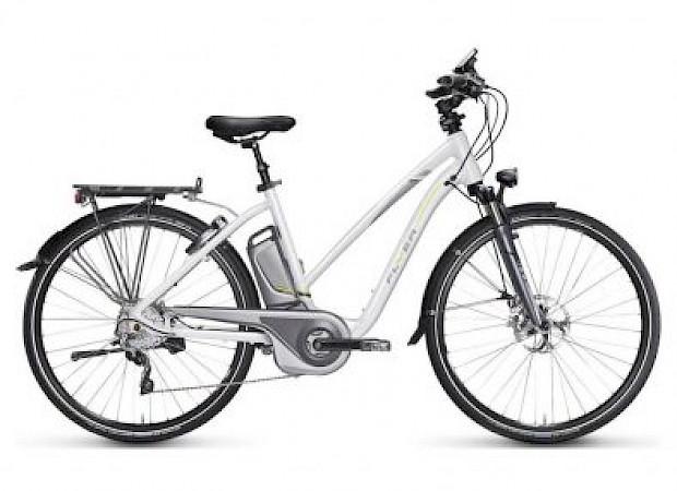 Flyer Electric Bike
