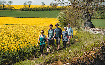 Walking through the Cotswold countryside - Iconic Cotswolds Hike.