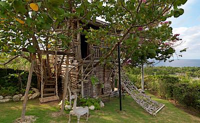 Treehouse 3 O
