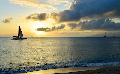 Paradise Beach General Rgb