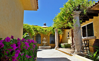 Agave Azul Luxury Villa For Rent In Cabo Del Sol Lifestyle Villas View Of Courtyard From Entrance L