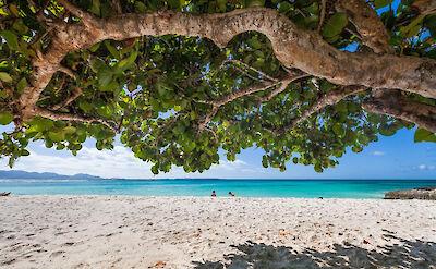 Villa Villa Anguilla Beach View 5