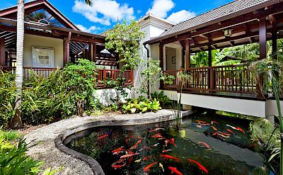 Villa Sandy Lane Feb Koi Pond