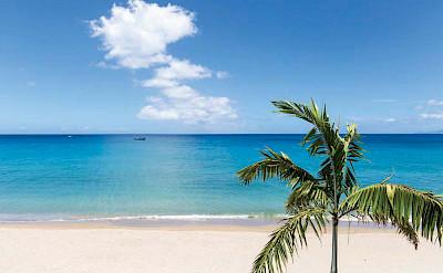 Paradise Beach Nevis Beach House View Cmyk 1