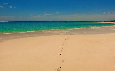 De Steps In The Sand Web