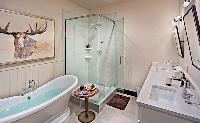 Bsl Lower Master Bath Hires