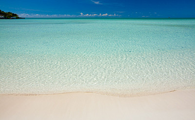 Crystal Clear Waters Of Taylor Bay