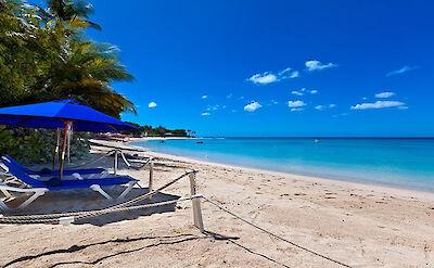 Feb Beach Loungers