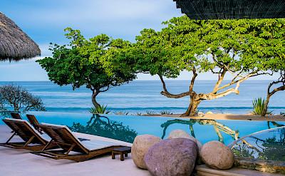 Pool Trees Xl