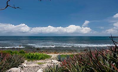 Beachfront 1 1