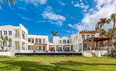 Anguilla Cerulean