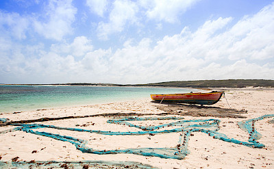 Champagne Boat Web