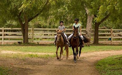 Horseback Riding 1