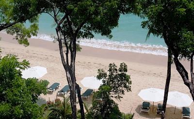 Coral Cove Beach Web