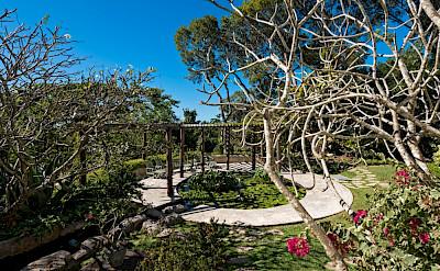 Jan Gardens 9