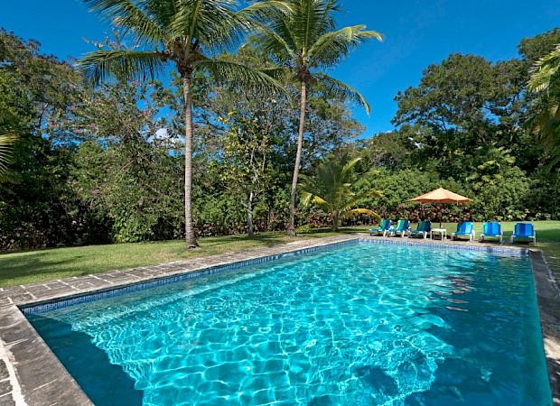 Nov Pool