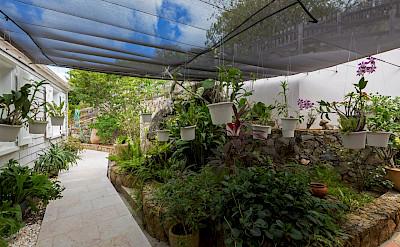 Vacation Rental St Barthelemy WV GDF Villa St Barts Villa Gdfgar Desktop