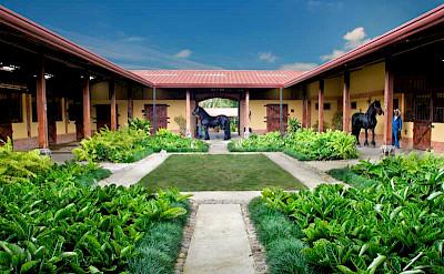 Costarica Haciendasantaines 2