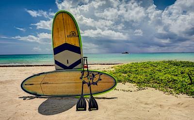 Kin Ich Playacar Playa Del Carmen Riviera Maya Mexico