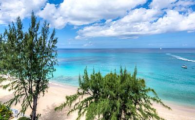 The Ocean View 1