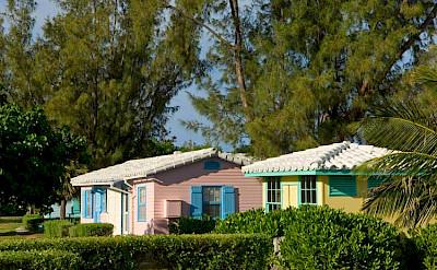 Bahamas Littlewhalecay