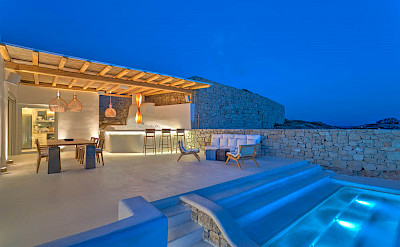 Villa At Night Perspective
