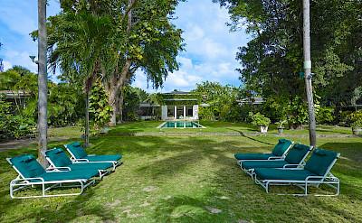 Lrg Loungers Garden