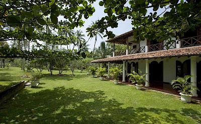 The Villa And Lawn 1
