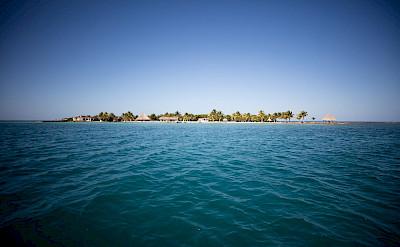 Copy+of+Royal+Belize 3