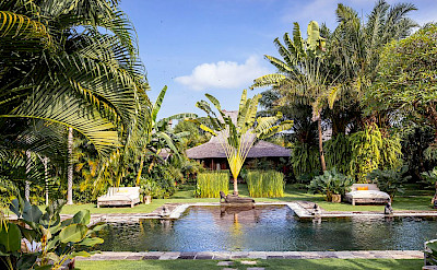 Villa Zelie Magnificent Pool And Garden Setting