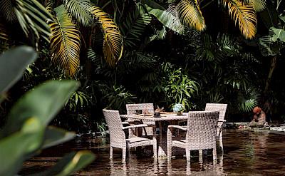 Villa Zelie Absolute Tropical Living
