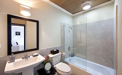 Bath C Fin