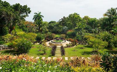 Jubilation Garden