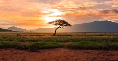 Africa villa rentals