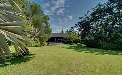 +Samadhana+ +Madagascan+palm+view+of+villa